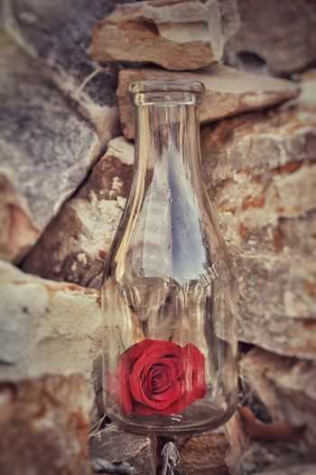 In A Bottle Red