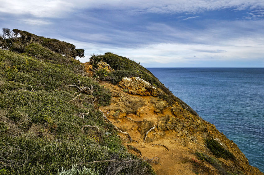 Top of the Hill. Australia Beach Beauty In Nature Cliff Cloud - Sky Day Grass Horizon Horizon Over Water Land Landscape Nature No People Outdoors Plant Rock Scenics - Nature Sea Seascape Sky Tranquil Scene Tranquility Water