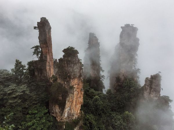 Avatar Beauty In Nature Cloud Cloud - Sky Cloudy Fairytale  Fantasy Photography Fog Foggy Hunan Landscape Low Angle View Nature Outdoors Places To See Before You Die Power In Nature Scenics Sky Tall - High Tranquil Scene Tranquility Travel Destinations Weather WuLingYuan Wulingyuan Scenic Area