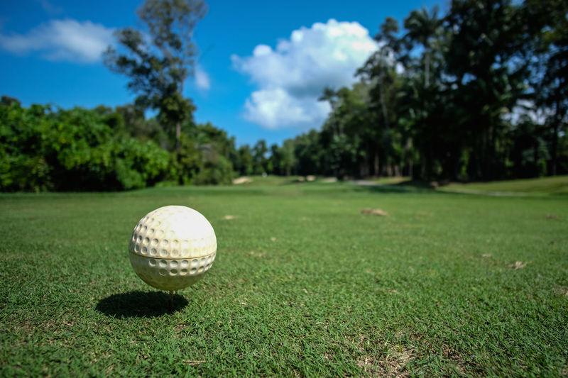 Blue Sky Forest Golf Golf Ball Golf Balls Golf Club Golf Course Golf Is My Life ⛳️ Golfball Golfcourse