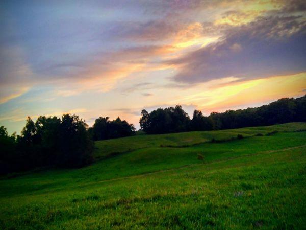 elbridge TN Beauty In Nature Grass Agriculture Cloud - Sky Outdoors Rural Scene Freshness Sky