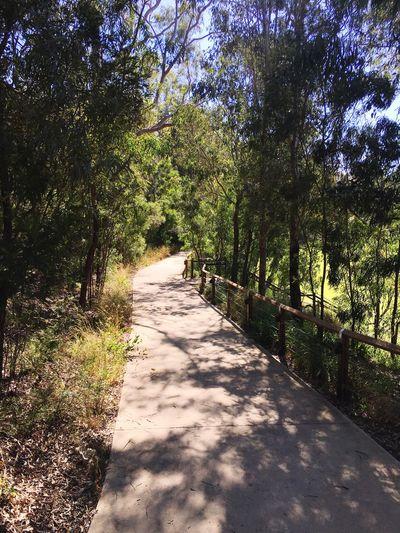 Parramatta lanes
