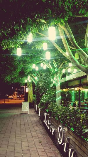 Illuminated Night No People Architecture Outdoors Green Color Tree Vintage Cafe Antalya