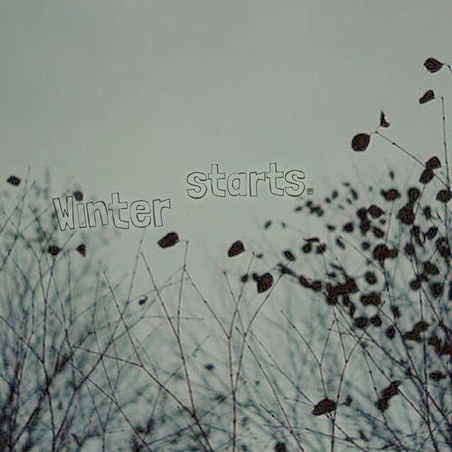 冬がはじまるよ 葉っぱ 秋色
