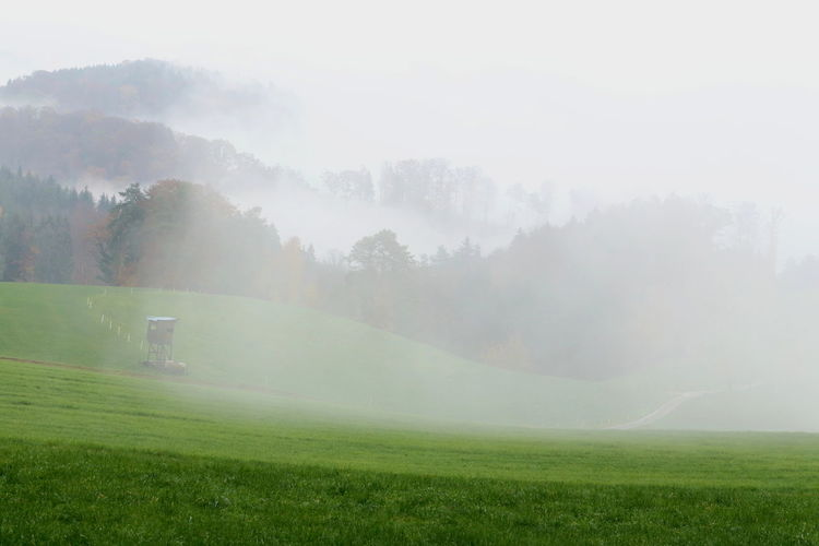 Nebel Fog