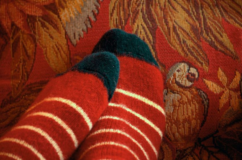 TK Maxx Socksie Home Body Winter Days Wild And Wooly Stay Cozy Season  Spirit Festive Tapestry Beauty And Elegance Curling Up Virgin Wool Tapestries Red Relaxation