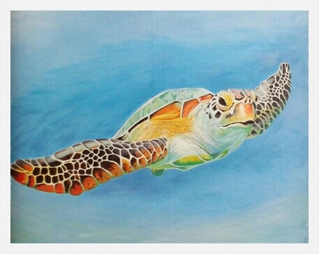 Art Wildlife Awesome Check This Out oil painting commission