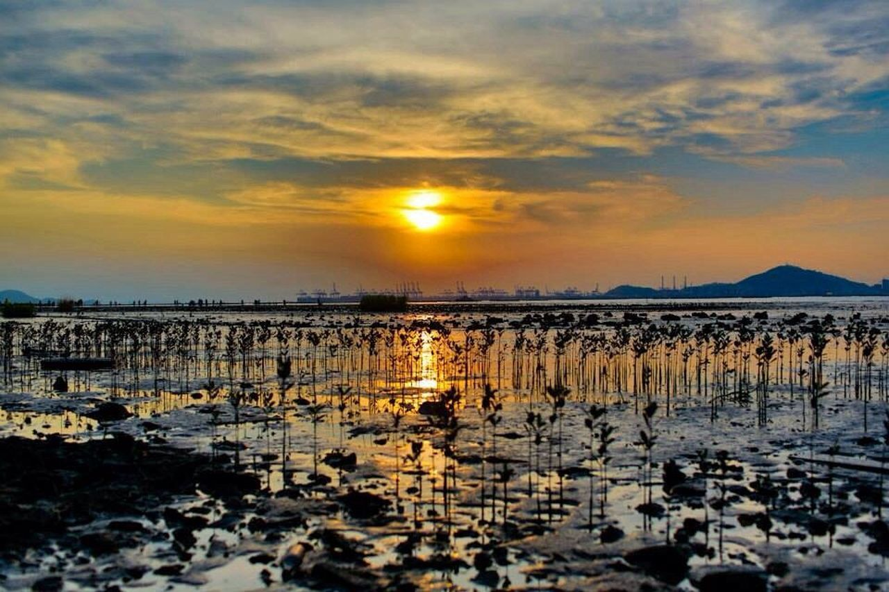 sunset, reflection, scenics, nature, sun, beauty in nature, tranquility, tranquil scene, water, sky, cloud - sky, outdoors, lake, sunlight, silhouette, no people, landscape, travel destinations, low tide, day