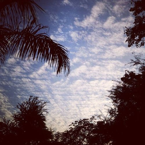 Mandatory sky picture for today. :| Kyaskyhainyaar Lookup Touchthesky Aakash somuchbeautiful