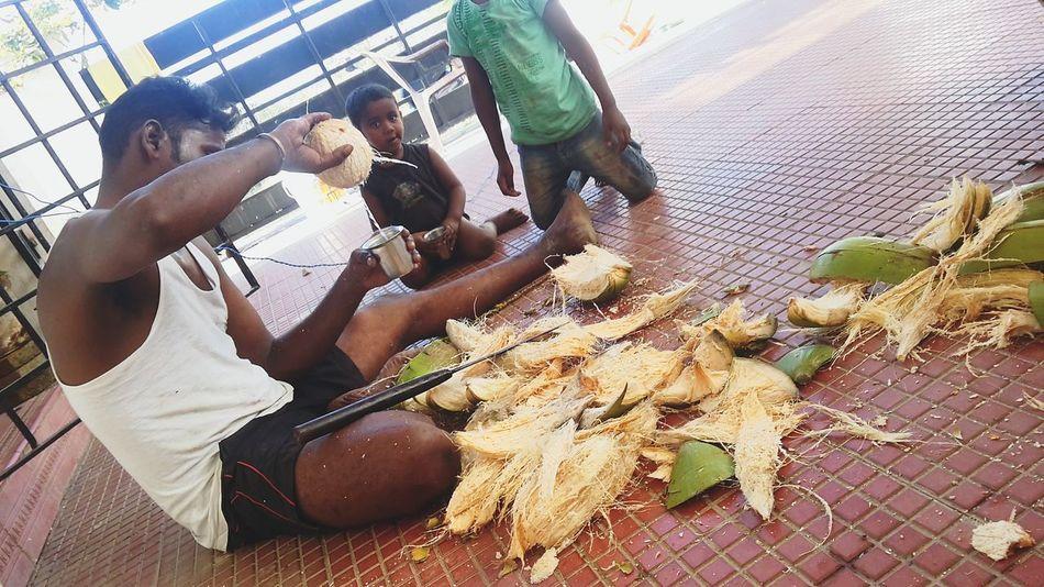Coconut Father & Son