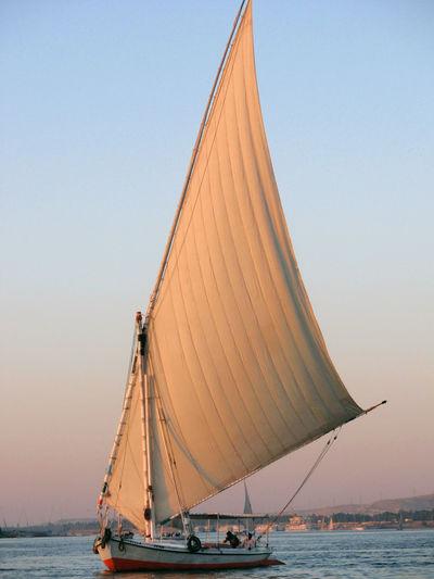 Aswan Egypt Boat Egypt Mast Nile River Sailing Sailing Boat Water Reflections