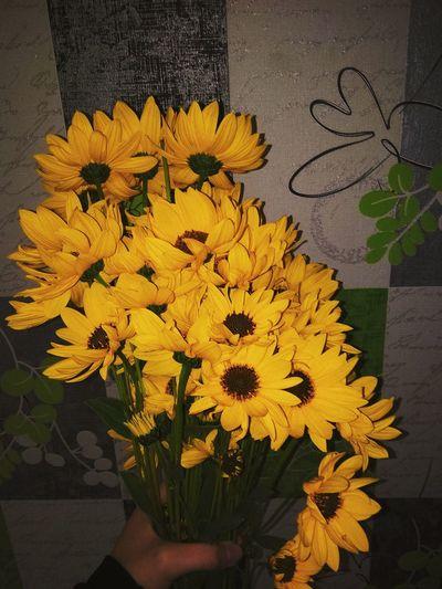 💙 Sunflower🌻 Flower Head Flower Yellow Close-up Bouquet Petal