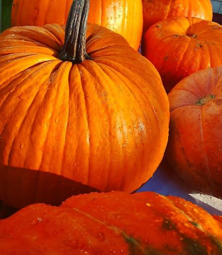 Orange Color Pumpkin Food And Drink No People Food Healthy Eating Freshness Autumn Squash - Vegetable Day Close-up Halloween Indoors  Nature