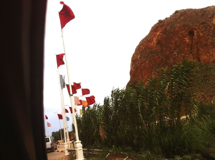 Morocco, Saidia Oujda Summertime SubhanAllah EyeEmBestPics EyeEm Best Shots EyeEm Best Edits Lion Morocco Flag Moroccan Flag Mountains Highway Nature Summer EyeEmbestshots Eyeemphotography Streetsofmorocco