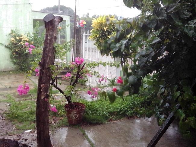 Jaltipan Dias De Lluvia Enjoying Life Un dia de lluvia.