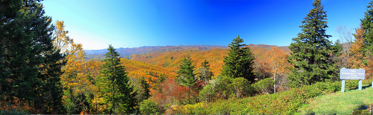 Blue Ridge Mountains in Autumn Autumn Colors Blue Ridge Mounains Blue Sky Panorama Tranquil Landscape Travel Trees Vacations