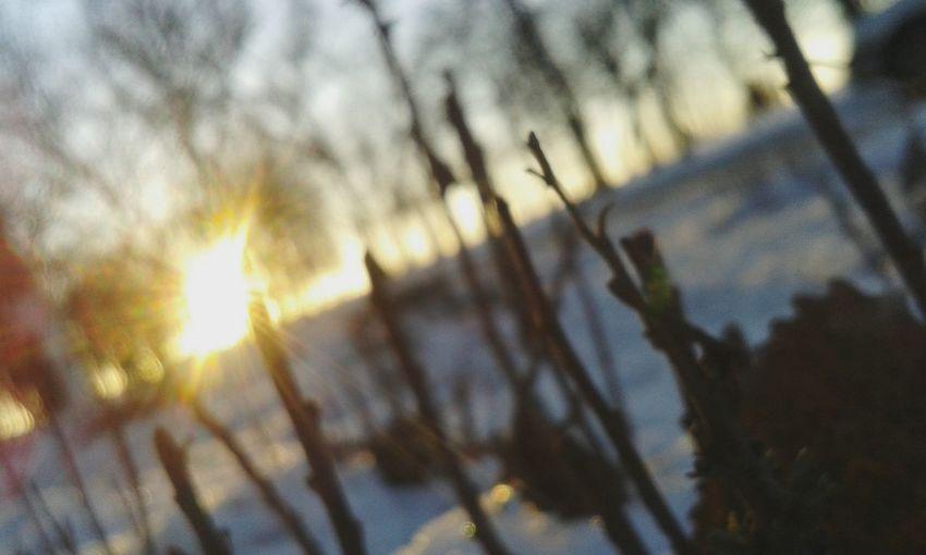 """рассвет, возле Азовского моря, старый """"новый год"""", Мариуполь. Вспоминается одно изречение. .."""" взгляни на мир шире, и мир откроется тебе""""..."""