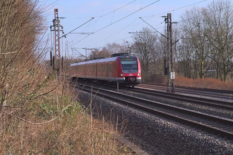 Deutsche Bahn S Bahn Bare Tree Day Db Regio Electricity Pylon Grass Land Vehicle Locomotive Mode Of Transport Nature No People Outdoors Passenger Train Public Transportation Rail Transportation Railroad Track Sky Train - Vehicle Transportation Tree