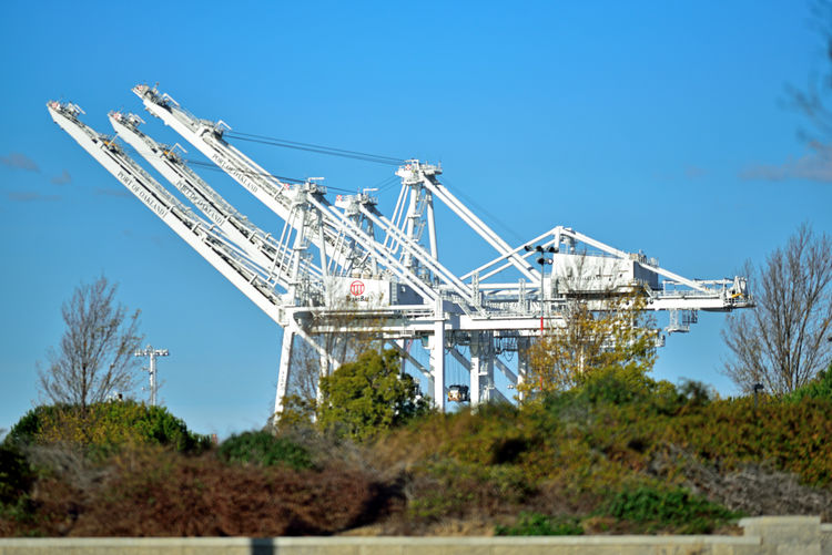 Middle Harbor's Shoreline Park 2 Shoreline Park Port Of Oakland,Ca. Middle Harbor Schrubs Trees Ridge Gantry Cranes Port Waterfront Maritime Port Machinery Lifts Containers Freight Transportation Shipping Industry Landscape_Collection Landscape_photography Import/export Commerce Transportation