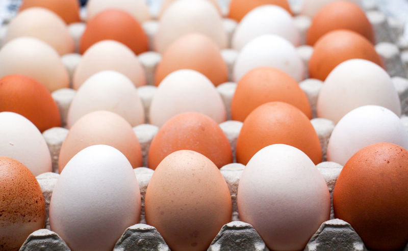 eggs Brown Eyes Abundance Backgrounds Beauty In Nature Brown Chicken Eggs Close-up Day Egg Egg Carton Food Food And Drink Fragility Freshness Full Frame Healthy Eating In A Row Indoors  Large Group Of Objects No People White