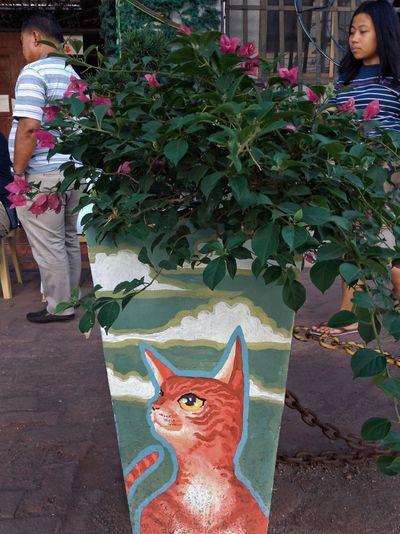 Portrait of cat by plant