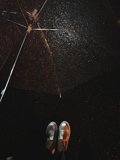 OSAKA Night Rain☔ Raining