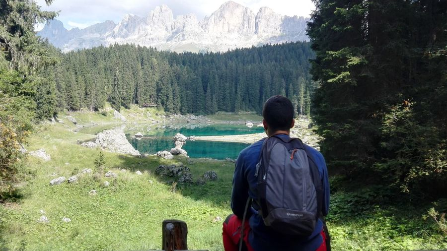 Rear View Tree Tranquil Scene Standing Scenics Leisure Activity Water Beauty In Nature Tranquility Mountain Non-urban Scene Travel Destinations Green Color Nature WoodLand Physical Geography MC* in lago di carezza