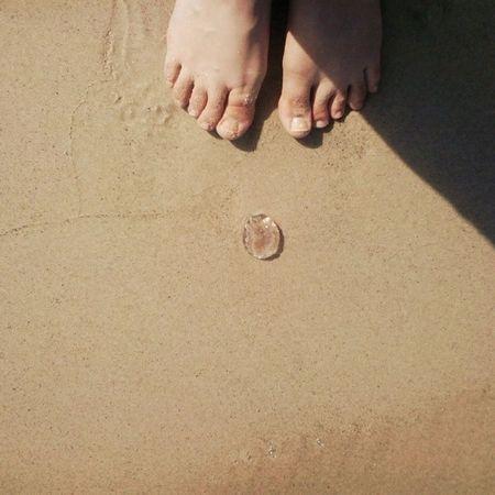 Une meduse .قنديل البحر From Where I Stand From_where_arabs_stands FWAS Ufeet ihavethisthingwithfloors viewfromthetopp selfeet summer instasummer tunisia
