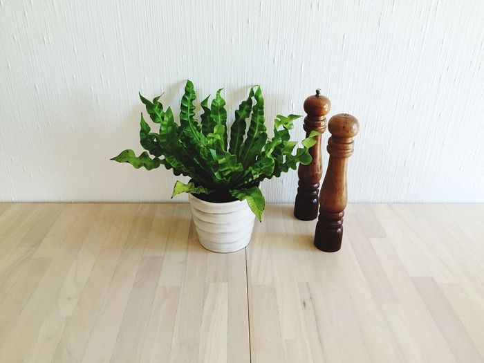 High angle view of potted plant by wooden salt and pepper shaker on table