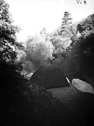 Camping RockstockPub