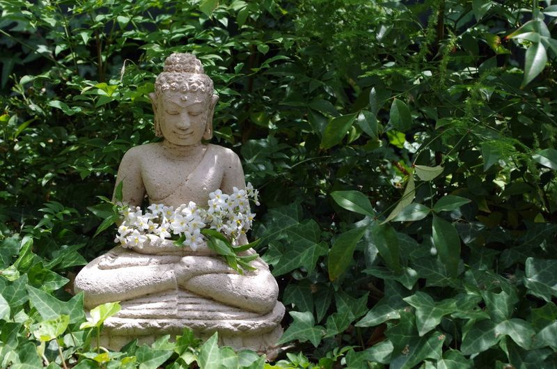 Buddha Statue With Flowers In Middle Of Plants