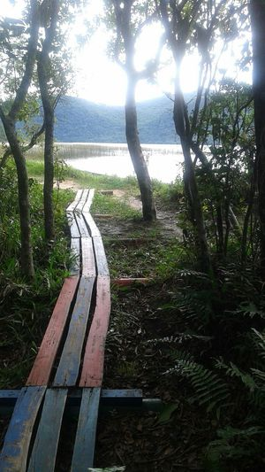 Beautiful Day Peace And Quiet Walking Around Florianópolis
