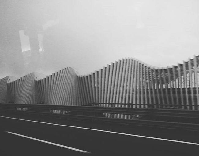 Santiagocalatrava ReggioEmigliaHighSpeedTrainStation Train Station Highspeed Photoinmotion Motion Capture Blackandwhite Photography Black And White Photography Paralel Architecture_collection Modern Architecture Steel Structure