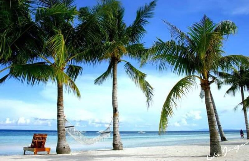 My Favorite Place Bohol Philippines Beach Photography Beach