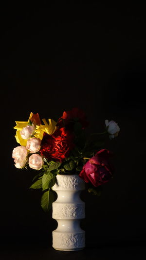 One More Stillife Bunch Of Roses Hard Light Hochkant Flower Plant Rose - Flower Rosé Studio Shot Black Background Vase Vulnerability  Fragility No People Nature Close-up Petal Flower Head Red Flower Arrangement Bouquet Bunch Of Flowers Special Like A Painting