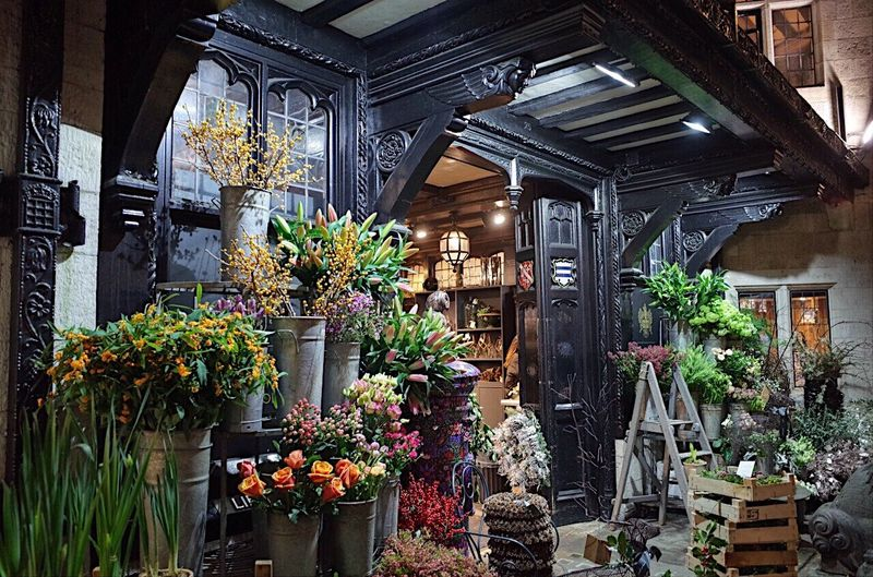 London Christmas flowers,Liberty Carnaby street, I Phone 6s EyeEm Gallery EyeEm Best Shots Outdoors