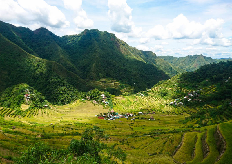 The Famous Banaue Rice Terraces Landscape Eyeem Philippines Philippines Travel Destinations Travel Photography Sony Nature Terrace Banaue Ifugao Philippines Mountain Terraced Field Tree Rice Paddy Agriculture Tea Crop Beauty Field Sky Agricultural Field The Great Outdoors - 2018 EyeEm Awards