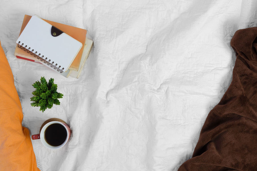 Coffee plant and pile of books on white bed. Morning mood. Bed Breakfast Domestic Life Home Modern Morning Pillow Working Bed Bedding Bedsheet Bedsheets Blanket Cozy Diary High Angle View Indoors  Journal Pillows Potted Plant Still Life White White Background Workspace