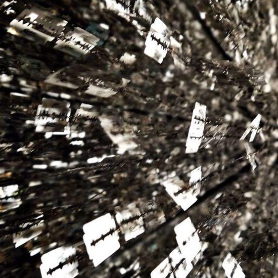 김연식 도루코칼날 아트 Blurred Motion No People Day Outdoors Motion Tree Nature Close-up