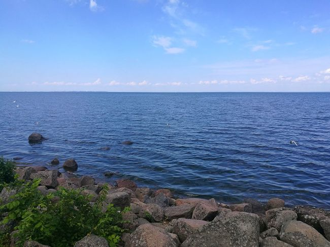 Gulf Of Finland Peterhof Russia, St.Petersburg Water Tranquility Tranquil Scene Outdoors Rock - Object Rocks Rocks In Water Rocks And Water Blue Scenics Nature Horizon Over Water Beauty In Nature Landscape Vacations Travel Photography Day Sky Nature Photography P9 Huawei
