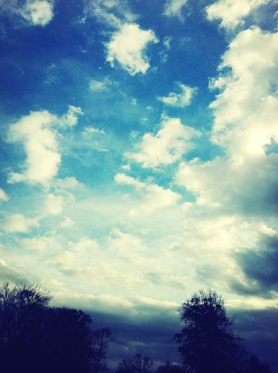 Pretty Sky (:
