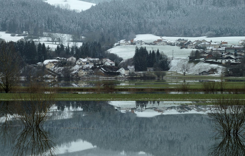 Cold Temperature Doubs Hiver Montagne Montagnes Nature Neige Outdoors Paysage Reflection Reflet River Sapins Sapinsapin Season  Snow Tree Val De Morteau Water Waterfront Winter