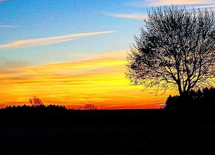 43 Golden Moments Outdoors Nature Ontario Iamcanadian Canada Countrylife Country Living Sunrise Paintedsky Sunrise_sunsets_aroundworld Sunrisephotography Golden