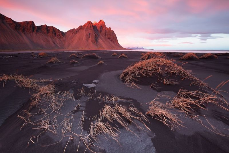 Vestrahorn sunrise Jenny Coppe Photography Black Sand Beach Wildness Photography Themes Canon Landscape_photography Iceland_collection Iceland Stokksnes Vestrahorn Beauty In Nature Cloud - Sky Scenics - Nature Nature Landscape Travel Destinations First Eyeem Photo