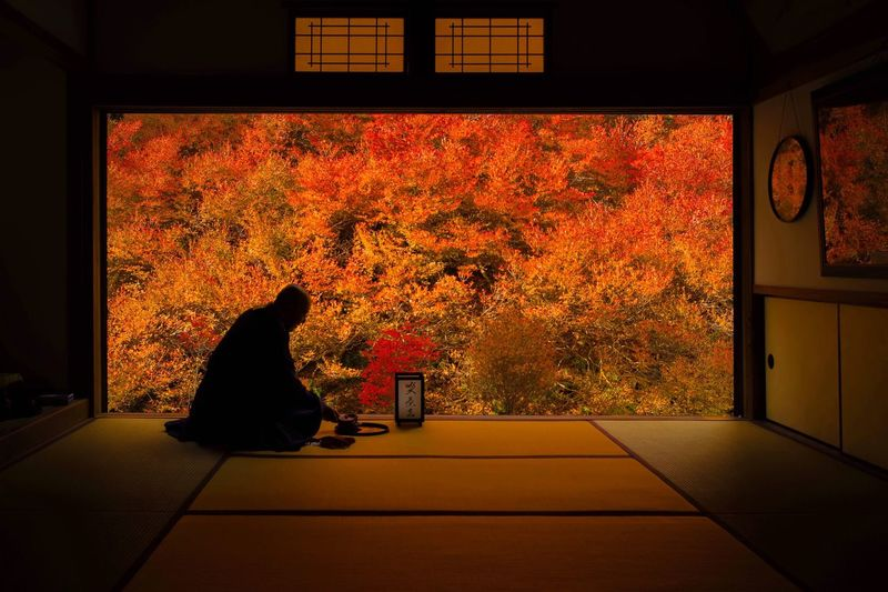 Man sitting in park during autumn