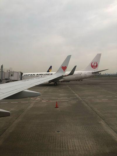 羽田 -> 神戸 #スカイマーク #SKYMARK Skymark Airlines Skymark Transportation Sky Air Vehicle Airplane Airport Runway Airport Mode Of Transportation