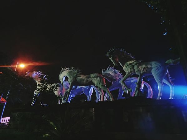 Horse Arts Culture And Entertainment Fan - Enthusiast Night Horses Horse Sculpture Horse Photography  Horse Sculls Horse Jumping Outdoors