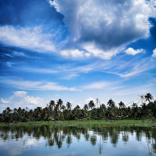 The scenic backwaters of Kumarakom in Kerala Tree Water Lake Reflection Alligator Reflecting Pool Sky Cloud - Sky