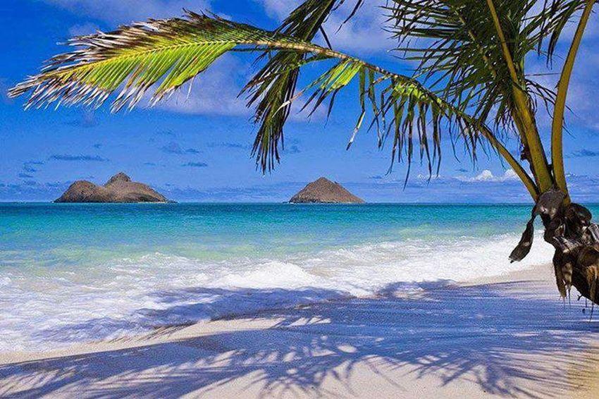 Beautiful Hawai'i Nei <3 My Beautiful Hawaii Nei <3