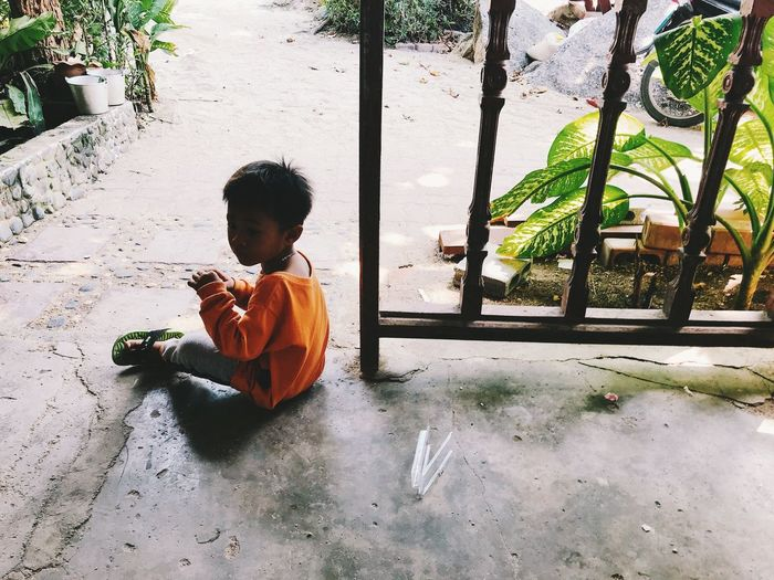 Child Childhood One Person Real People Boys Plant Men Males  Day Lifestyles Nature Outdoors Full Length Leisure Activity Sitting Casual Clothing Footpath Innocence